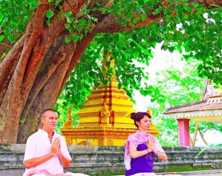 5 Day Bliss Wellness Retreat at Navutu Dreams