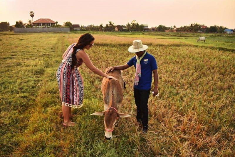 Cambodian Green Season by Navutu Dreams