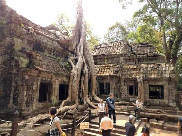 Ta Prohm Temple Angkor Park - Just minutes from Siem Reap Cambodia