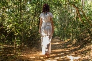 Forest bathing by Navutu Dreams
