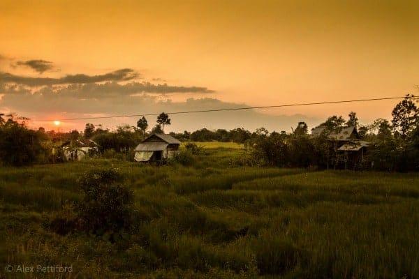 Cambodian countryside - © Alex Pettiford